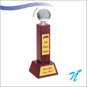 Wooden Globe Trophy