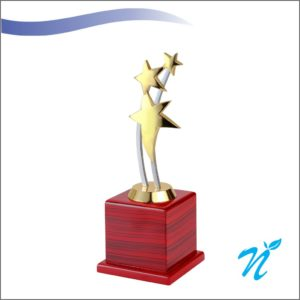 Star Award Trophy (Small)