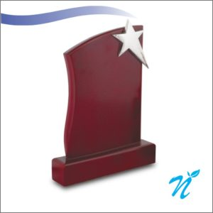 Wood & Brass Combination Trophy (Silver)