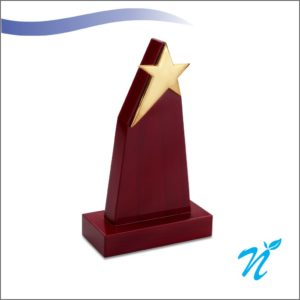 Brass & Wood Combined Trophy