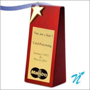 Star Award Trophy (Silver)