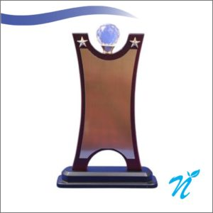 Wooden Trophy (Height: 10 in) (Gold Plate)