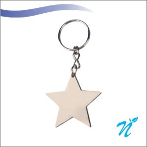 Star Shape Metal Keychains